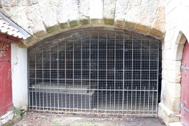 Unter einem Torbogen aus Natursteinen befindet sich ein breites Gitter. Dahinter kaum erkennbar ein steinernes Überbleibsel einer Klosteranlage.