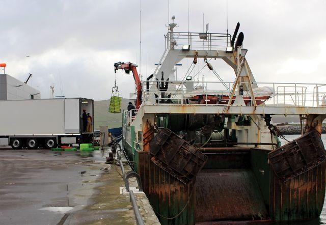 Ein großer Trawler wird entladen. Die Fischkisten werden mit einem bootseigenen Ladekran direkt in einen weißen Lkw gehievt.