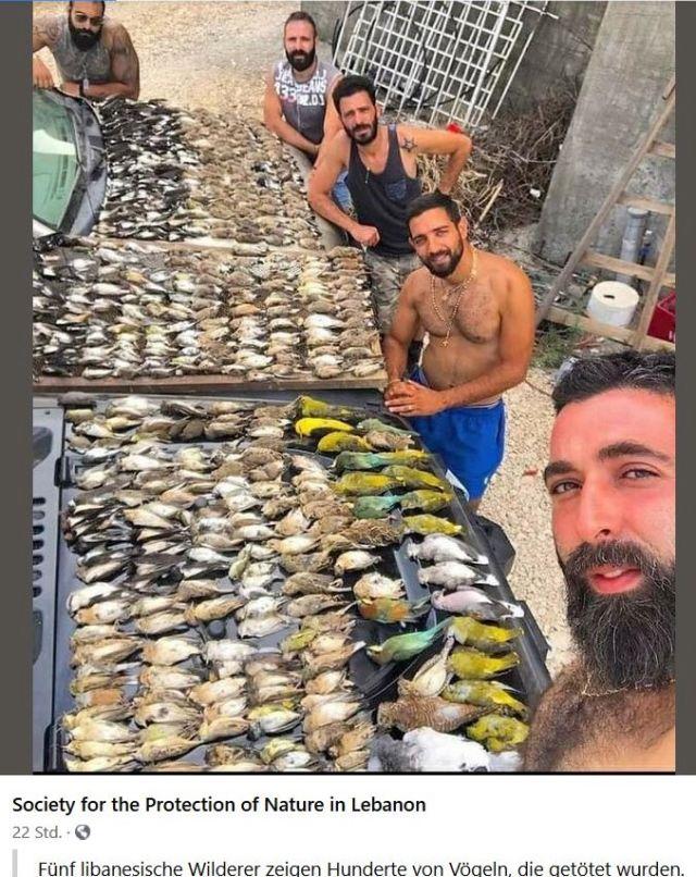 Drei Männer mit Bart und nacktem Oberkörper an mehreren Tischen mit unzähligen toten Singvögeln.