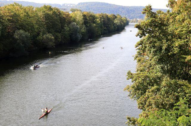 Der Neckar mit Kanufahrern. Links und rechts Bäume und Gebüsch.