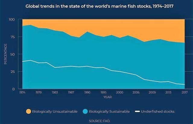Grafik: In orange sind die überfischten Bestände, in blau, die noch nachhaltig befischten Gebiete, eingezeichnet. Angaben im Artikel.