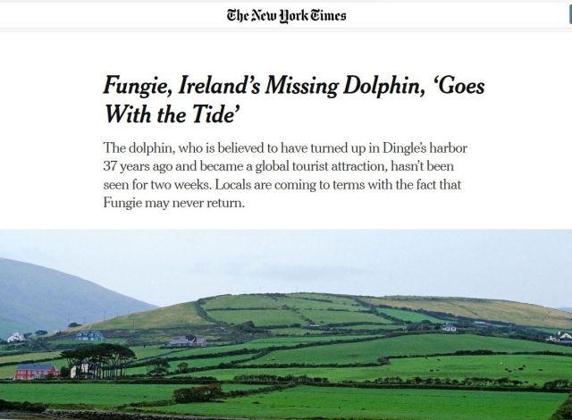 """Screenshot aus Internetseite der New York Times. Titel über einer grünen Landschaft: """"Fungie, Ireland's Missing Dolphin, 'Goes With the Tide'""""."""