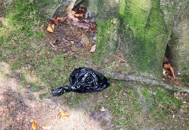 Schwarzer Hundekotbeutel, zugeknotet, vor einem Baum am Rande eines Feldwegs.