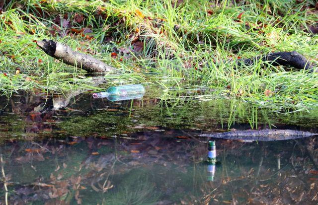 In einem Weiher treiben zwei Leere Flaschen.