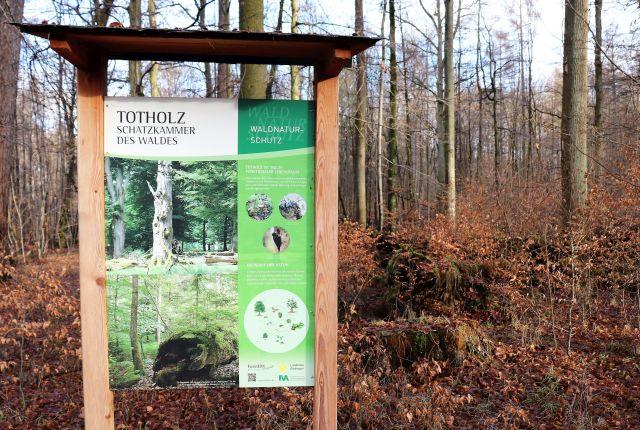 """Informationstafel in weiß-grün zum Thema """"Totholz. Schatzkammer des Waldes"""". Rings herum Bäume und Büsche im winterlichen braun."""