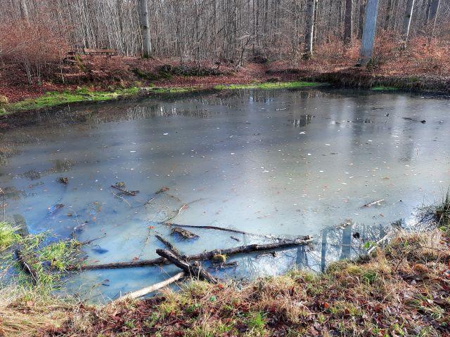 Eine dünne Eisschicht bedeckt die Oberfläche eines kleinen Sees.
