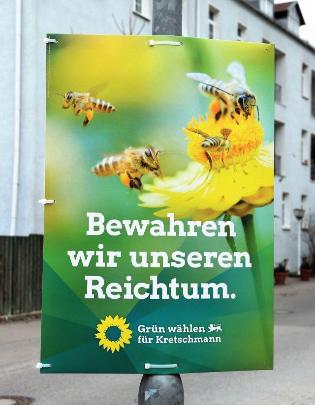 """Ein seltenes Plakat der Grünen mit Bienen an einer Blüte. Text: Bewahren wir unseren Reichtum""""."""