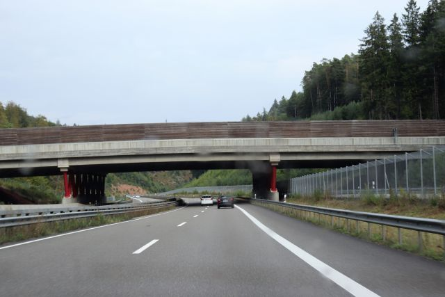 Eine sogenannte Grünbrücke über einer vierspurigen Straße. Holzbretter sichern die Betonbrücke nach oben so ab, dass kein direkter Einfall der Fahrzeugscheinwerfer möglich ist. An der Straße führt ein Metallzaun entlang, an dem oben ein schräger Zaun angebradcht ist, der ein Übersteigen unmöglich macht.