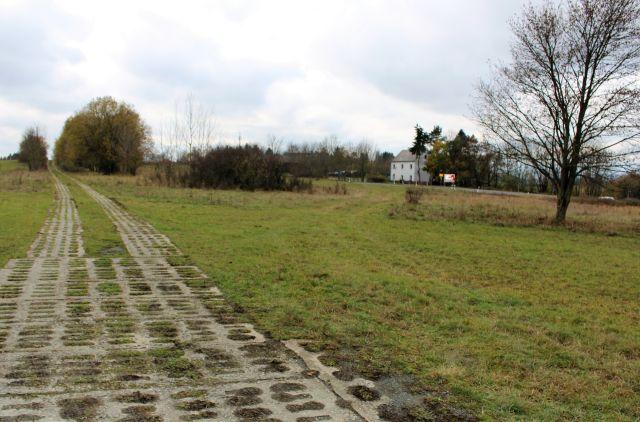 Kolonnenweg aus Betonsteinen der früheren DDR-Grenztruppen, jetzt umgeben von Gebüsch. Im Hintergrund das erste Haus im 'Westen'.