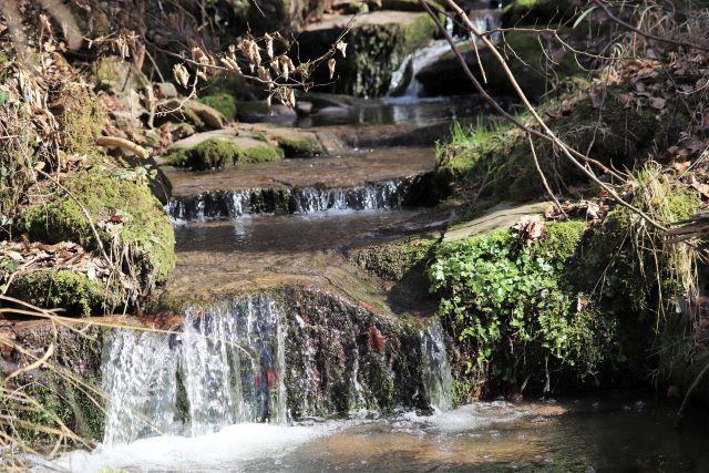 In einem kleinen Bach wird das Wasser von der Sonne beleuchtet, es fällt über große Steine.