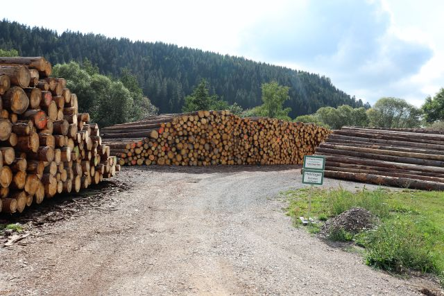 Holzlagerplatz. Im Hintergrund eine Waldfläche.