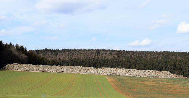 Gewltiger Holzstapel aus Baumstämmen am Waldrand.