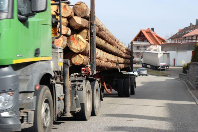 Ein grüner Lkw transportiert lange Baumstämme.