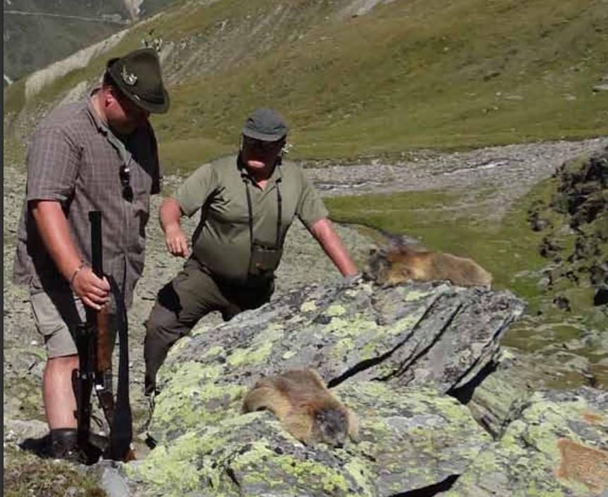 Zwei Männer (Jäger) mit Gewehr und erlegten Murmeltieren in den Alpen.