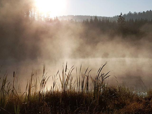 Leichter Nebel steigt aus einem See auf.