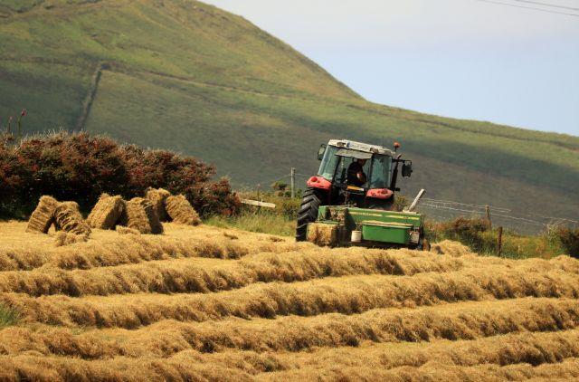 Mit einem kleineren Traktor wird Heu in viereckige Pakete gepresst.