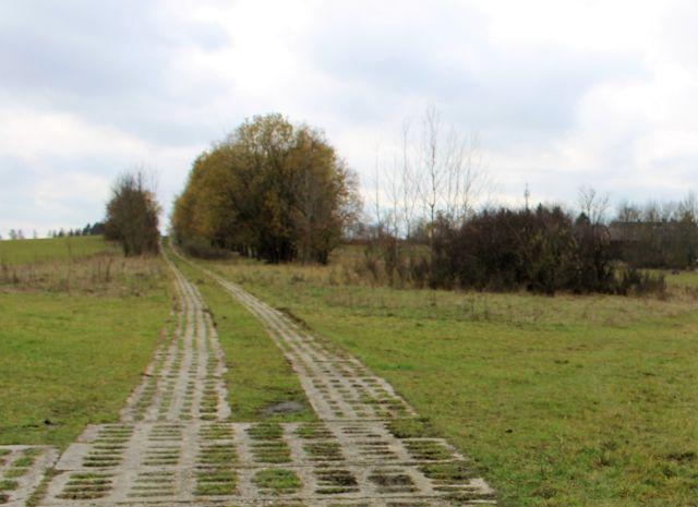 Ein früherer Kolonnenweg der Nationalen Volksarmee der DDR aus Betonsteinen wird von nachgewachsenen Hecken umgeben.