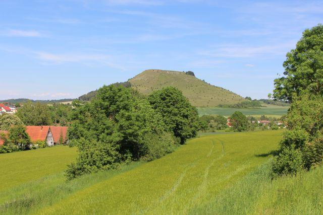 Hecken zwischen Grünland. Im Hintergrund der Ipf. Der Berg hat eine flache Kuppe.